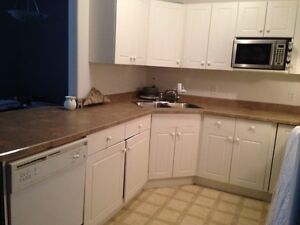 Kitchen sink buy sell items tickets or tech in regina for Kitchen cabinets regina