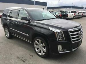 2015 Cadillac Escalade Premium balck on black