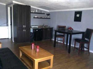 PRICE REDUCED! 3 Suite, Up/Down duplex, Beautiful Renovations!! Regina Regina Area image 2