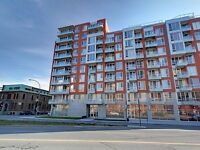 Downtown Apartment for Rent,Fully furnished Lowney, Griffintown
