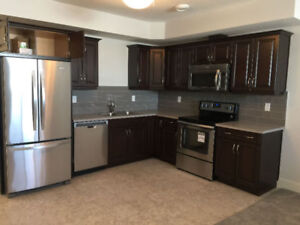 Room for rent at wonderful neighbor-North Center Griesbach