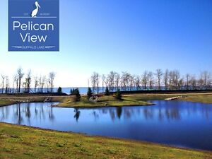 Pelican View Estates! Buffalo Lake! Lakefront & Lakeview Lots!