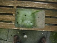 200 plus Green Concrete roof tiles (used)