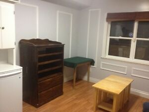 Furnished apartment 1 BR/1Bath Avail Immediately