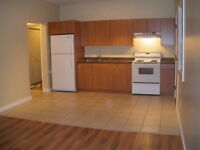 Nice Westsyde 1 Bedroom in newer house - Available Immediately