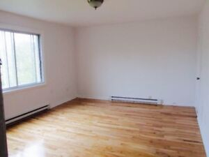 Bright, renovated, freshly painted 1 1/2 apartment third floor