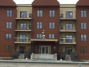 BRAND NEW 1-BEDROOM CONDO ... AVAILABLE NOW!