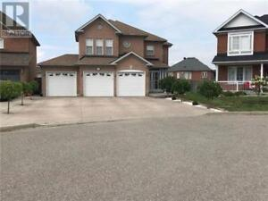 12 WILLOW HEIGHTS CRT Brampton, Ontario