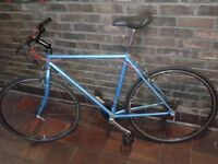 FULL SERVICE Men Women CUSTOM Vintage RALEIGH PIONEER Road Racer Hybrid Bicycle EXCELLENT CONDITION