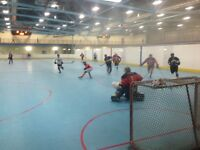 Gwings tier 4 Ball Hockey Summer Leacock needs 2-3 good players