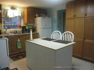 FULLY FURNISHED, WINTERIZED COTTAGE ON CHEMONG LAKE, Peterborough Peterborough Area image 7