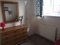Single room to rent in a friendly family house