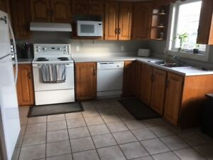 Timberlea House for Rent
