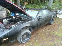 1987 firebird project