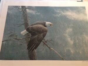 Robert Bateman Artwork