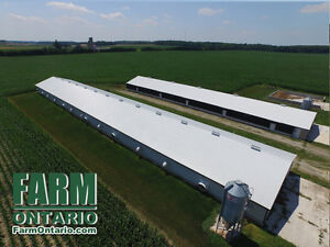 Poultry Farm w Modern Controls, 4 Bdrm, Shop & Corn in Hensall! London Ontario image 1