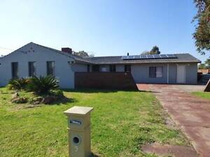 4 x 1 house for rent - 5 Periwrinkle Way , Parkwood Gosnells Gosnells Area Preview