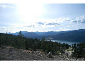 Wider than Normal Lakeview Lot in Canadian Lakeview