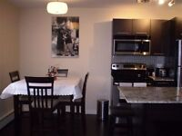 St Boniface Furnished 1 bdrm Condo-$450/wk. Available FEB 21