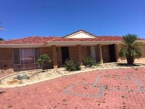 4 X 2 House in Alexander Heights 6064 Perth Perth City Area Preview