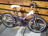 Childrens bicycle Extreme Wave made by Raliegh, suit 5 to 8 years