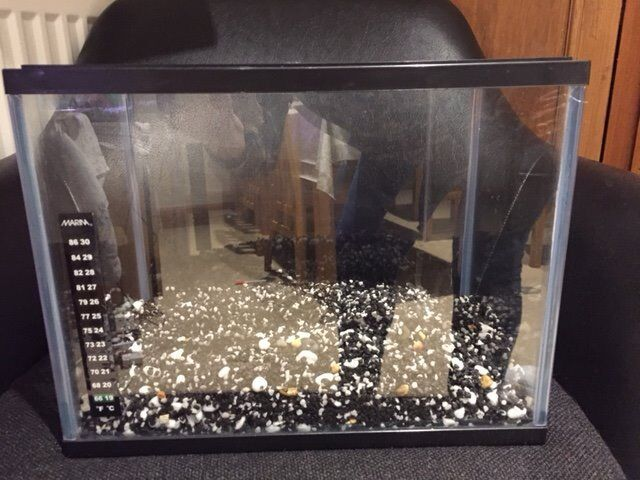12litre fish tank