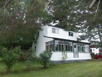 3 Bedroom home on a 1/2 Acre lot in the City