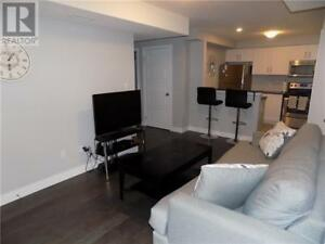 New 2 Bedroom Apartment in Great Location