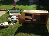 Rabbit / guinea pig hutch and accessories: main hutch, travel hutch, garden run, shelter, hay, bowl.