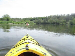 !!LOOKING FOR KAYAKS!!