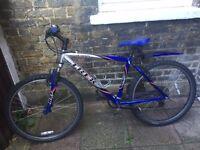 Trek mountain bike in good condition - boys or ladies