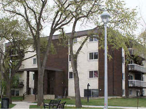 Fully reno three bedrooms condo in the heart of downtown