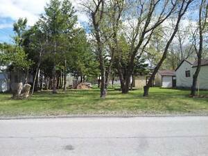 Lot for SALE in Selkirk