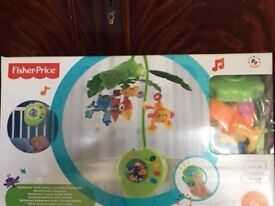 FisherPrice Rainforest Peek-A-Boo Leaves Musical (like new)