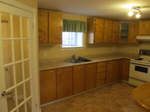 Two bedroom apt in Humber heights