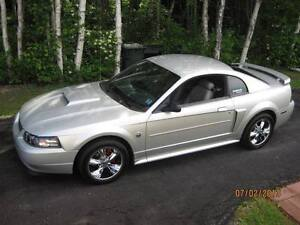 2004 Ford Mustang 40th AnnivGT Coupe (2 door)