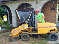STUMP GRINDER, STUMP REMOVAL, TREE SERVICE