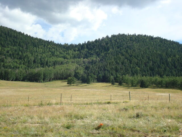 Elk Ridge Trading Post