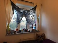 Single room for a female between Kentish Town and Tufnell Park