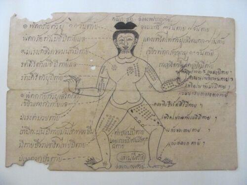 Antique Thai Medical / Samut Khoi Paper Diagram