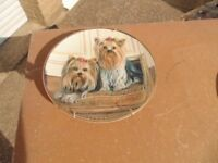 Danbury Mint Yorkshire Terrier Collectors Plate in as New Condition (Called = Pampered Pair)