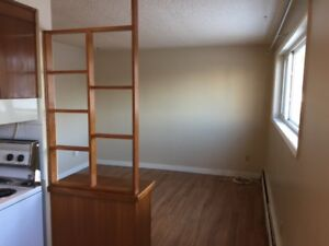 Charming and spacious 1 bedroom suite in Westmount!
