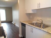 1 and 2 bedroom Beautiful suites Downtown!