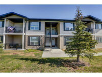 Modern Two Bedroom Condo In Strathmore