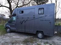 Ford Iveco 3.5t horse lorry