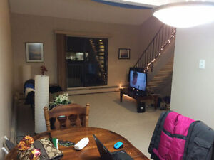 1 Bdrm Apartment + Loft for Rent ***Available Nov 1st***