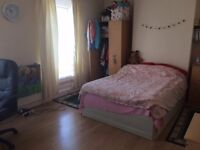 Spacious room in shared house £250pcm
