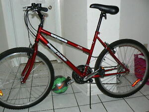 EXTRA Large FABULOUS Bike -Upto 6 Feet 1 Inch -Made In Canada