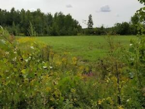Wanted land in Lakeshore 1-10 acres
