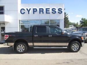 2010 Ford F-150 XLT- New Tires, Accident Free